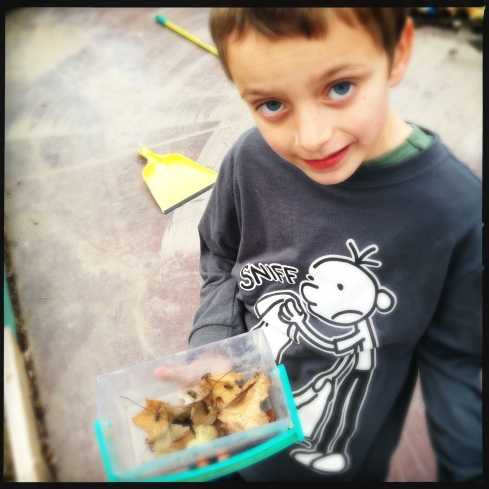 Collin and his bugs, they're besties. :)