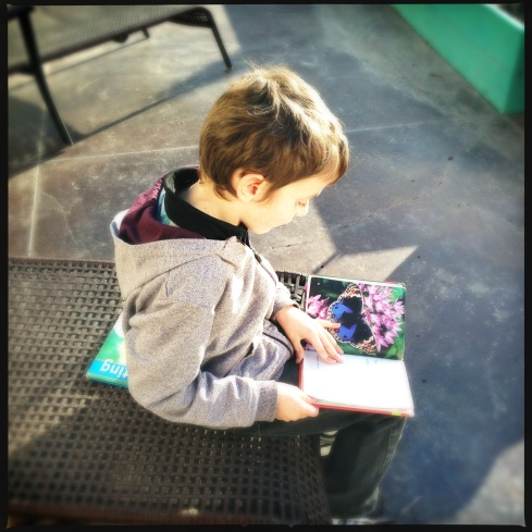 My Little Entomologist - always reading up on insects.